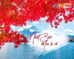 Tour Nhật Bản Mùa Thu 2020 - Tokyo - Fuji - Hakone - Odaiba (5N4D)